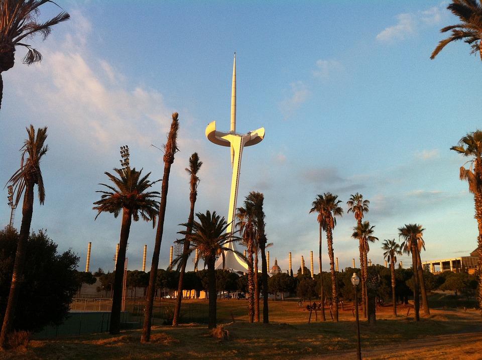 Palau Sant Jordi, Palm Tree, Montjuic, Mountain