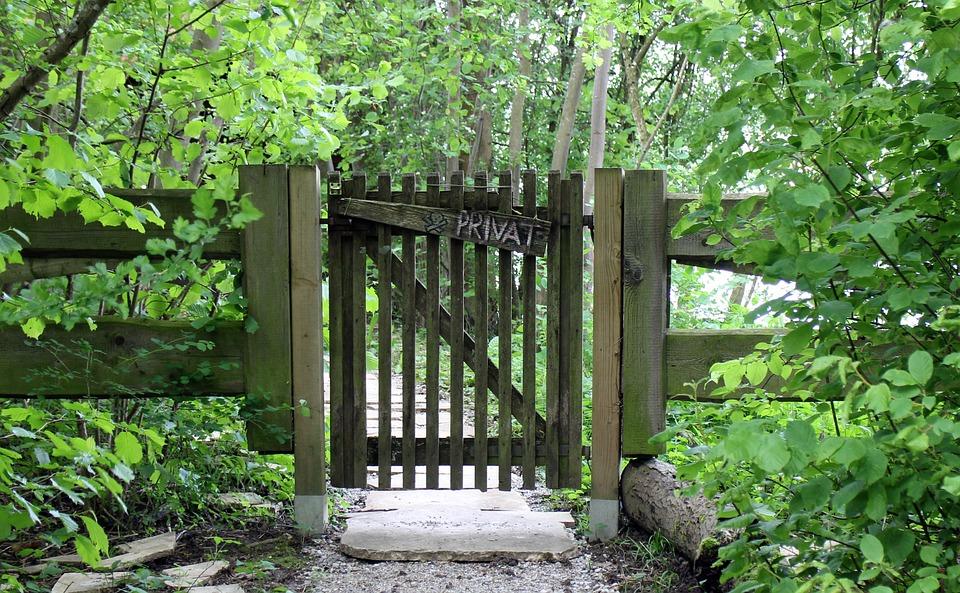Input, Goal, Paling, Picket Gate, Garden, Nature