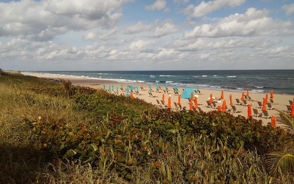 Beach, Atlantic, Florida, Palm Beach, Beach Umbrellas