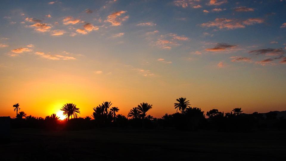 Marrakech, Sunset, Palm, Morocco, Horizon, Evening Sky