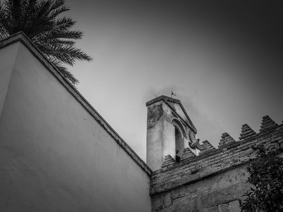 Tower, Paloma, Palm Tree, Crenellate, Cloudy, Birds