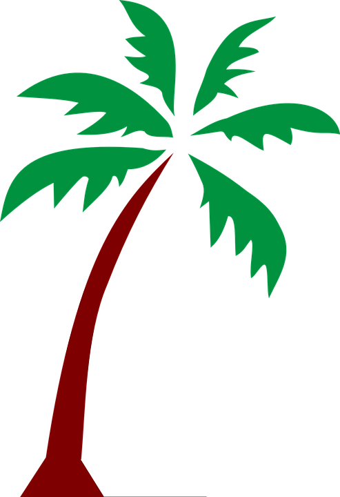 Island, Palm, Fronds, Tree, Tropical, Nature