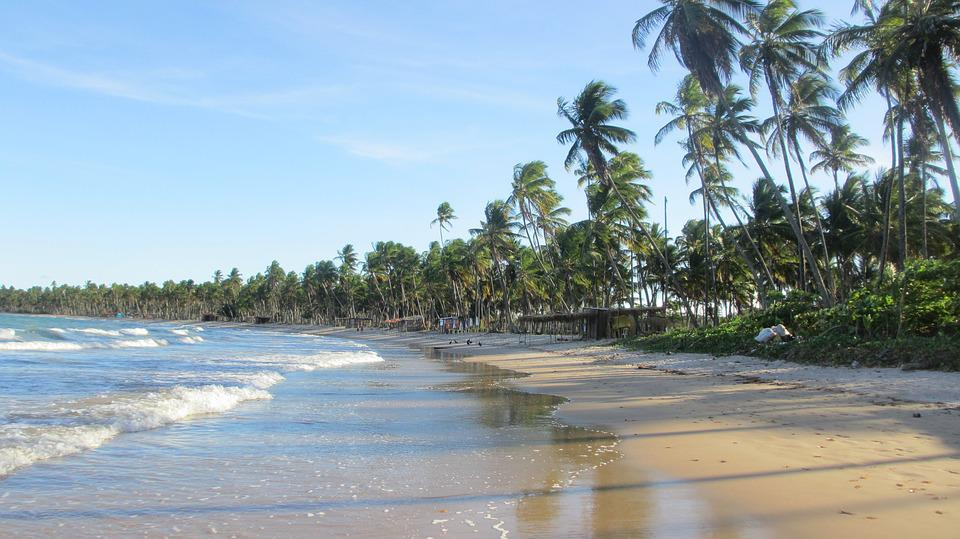 Brazil, Biopeba, Bahia, Beach, Palm Trees