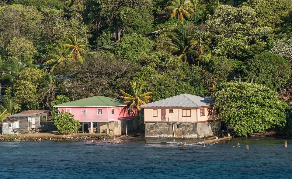 Roaton, Honduras, Coast, Tropical, Palm Trees