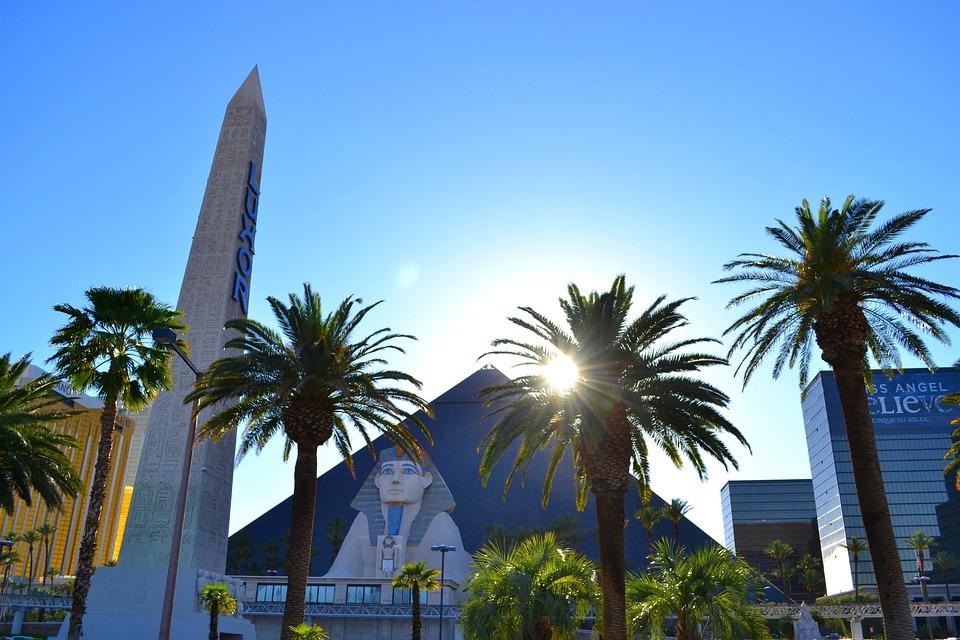 Hotel, Luxor, Casino, Palm Trees, City, Summer, Sun