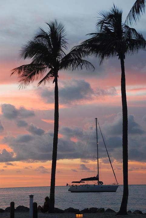 Palm Trees, Sailboat, Sunset