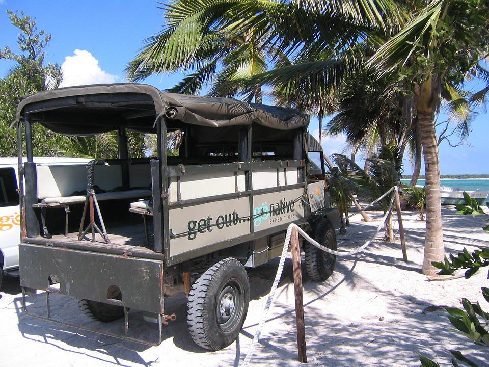 Sea, Palm Trees, Auto, Unimog