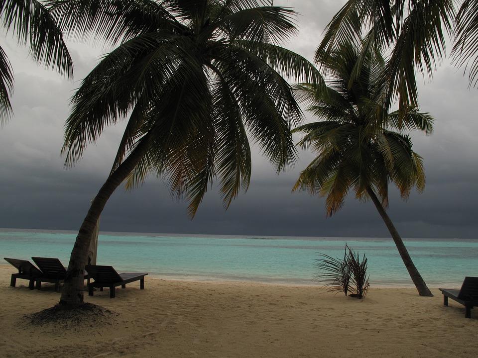 Maldives, Palms, Beach, Sand, Sea, Bad Weather