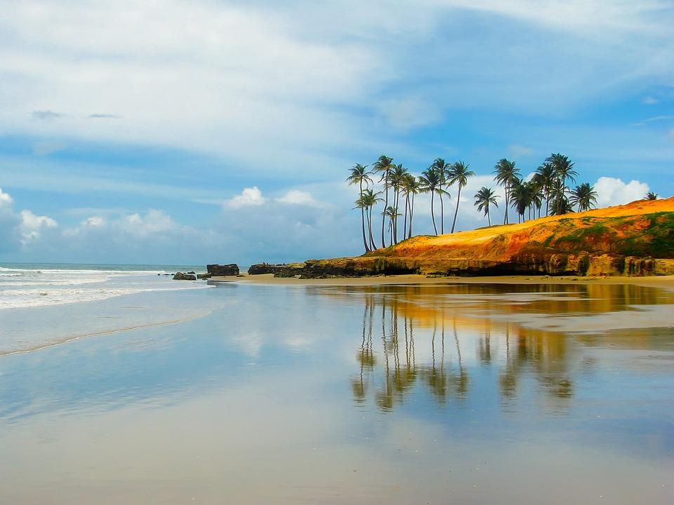 Brazil, Sky, Clouds, Palms, Palm Trees, Sea, Ocean