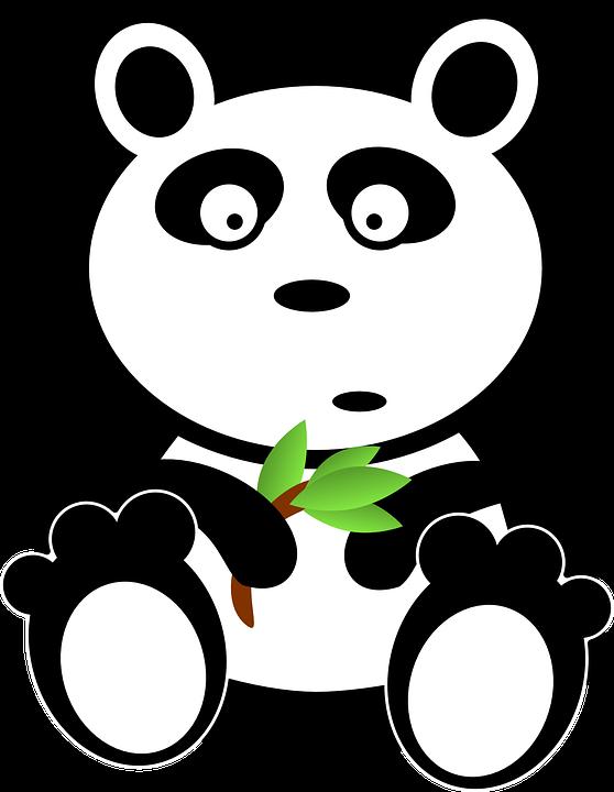 Panda, Bamboo, Food, Asia, Leaves, Eating, Animal