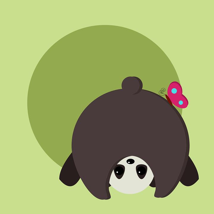 Animal, Bear, China, Flowers, Panda, Playful