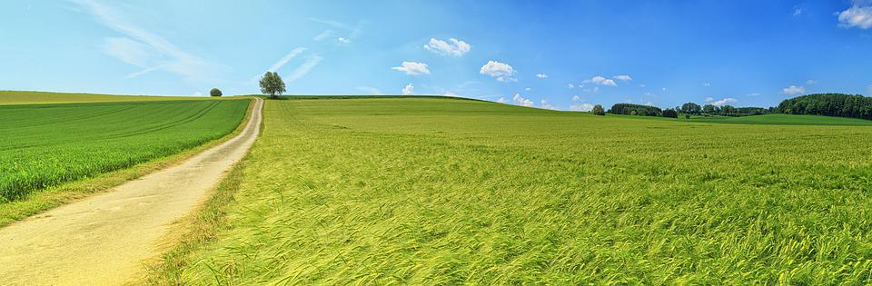 Field, Countryside, Panorama, Meadow, Nature, Scenic