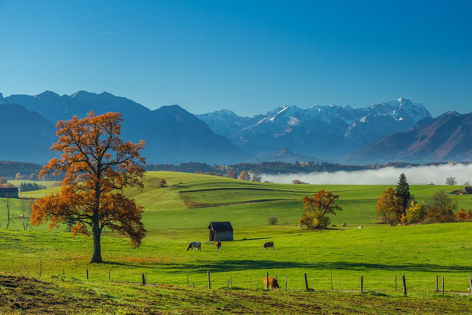Bavaria, Panorama, Alpen, Landscape, Mountains, Meadow