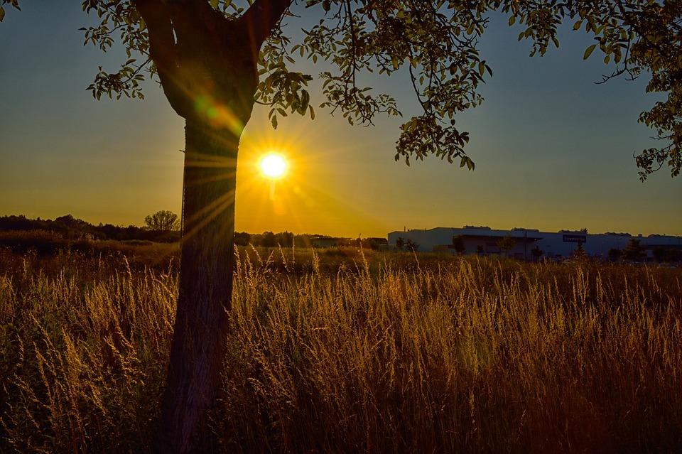 Sunset, Nature, Dawn, Landscape, Sun, Dusk, Panorama