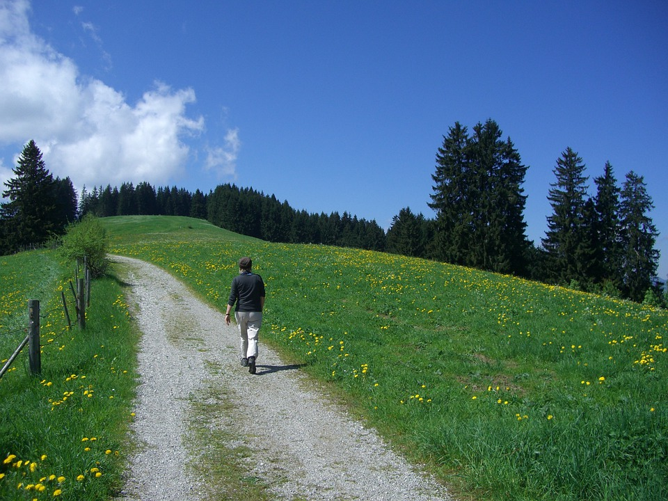 Hiking, Walk, Trail, Wanderer, Panorama Trail