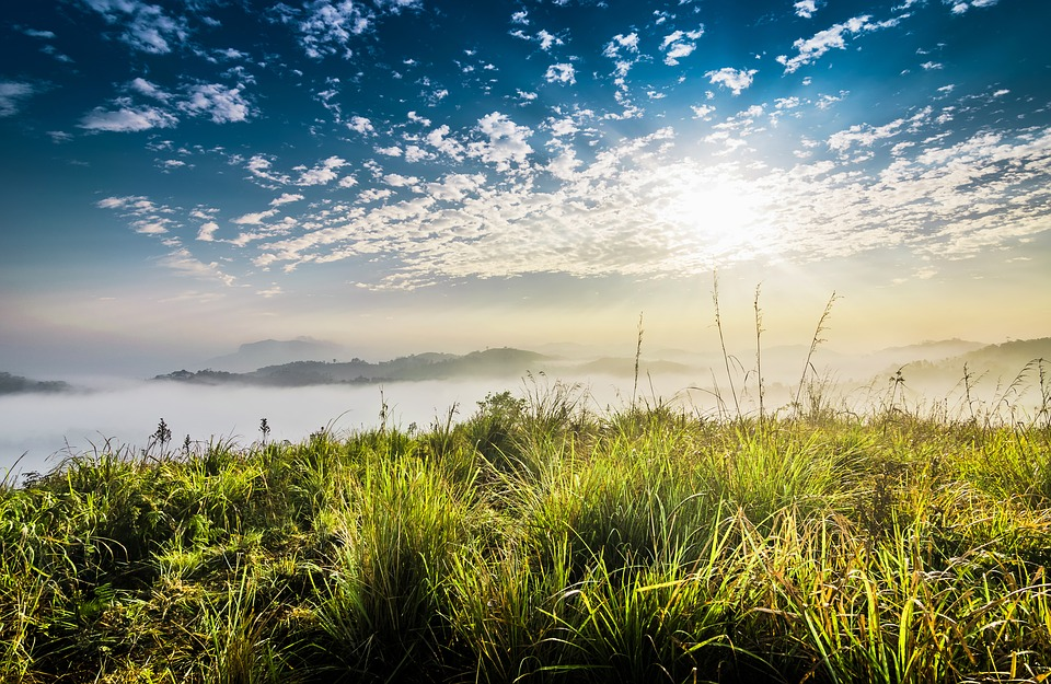 Water, Nature, Panoramic, Sky, Landscape, Grass