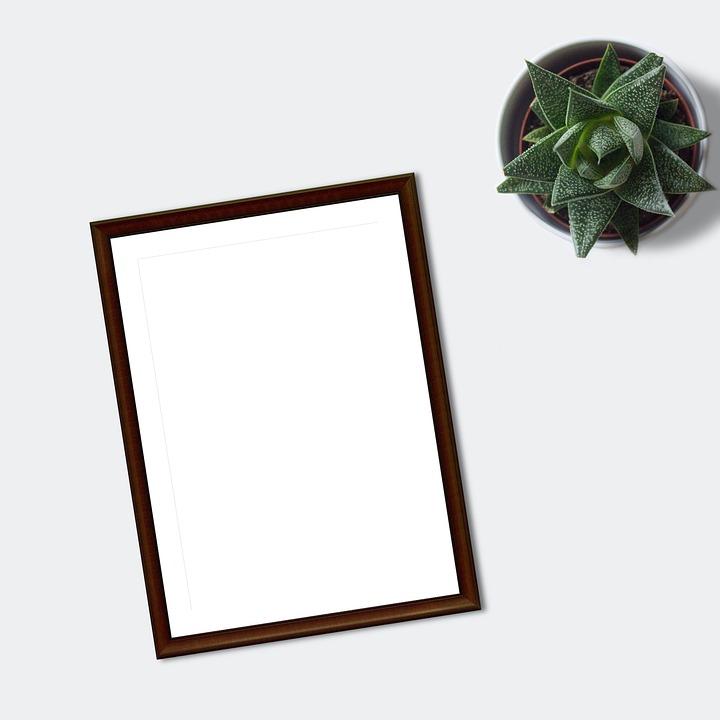 Frame, Mockup, Flatlay, Plant, Ecommerce, Blank, Paper