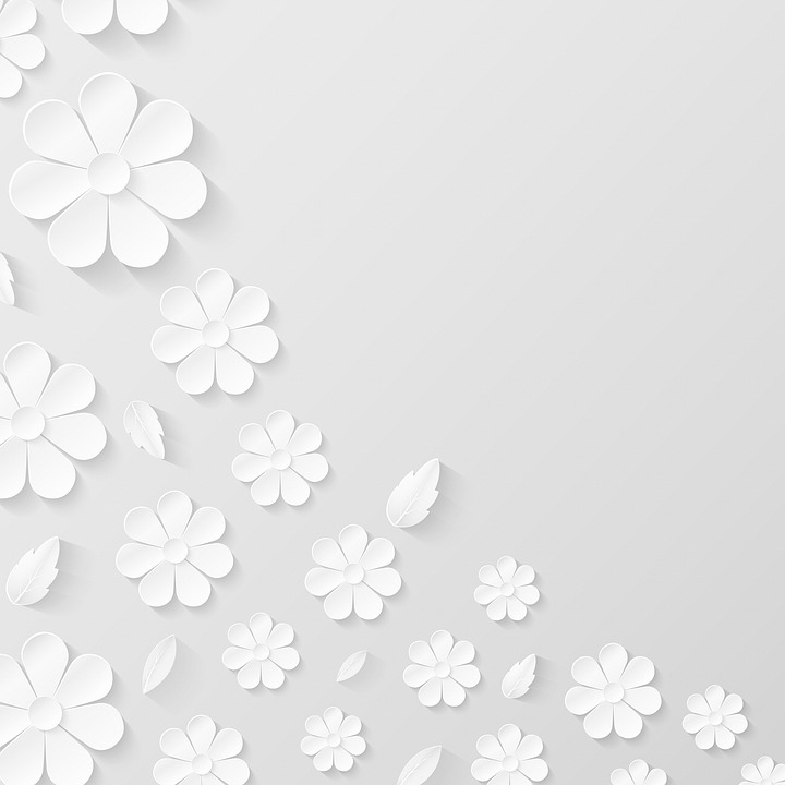 Paper Flower Background, White, Flowers, Paper, Texture