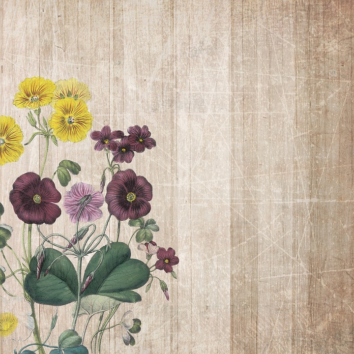 Background, Boards, Flowers, Scrapbooking, Paper