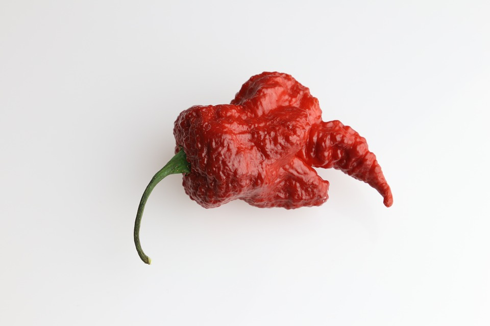 Chili, Paprika, Acute, Spicy, Component, Red, Spices
