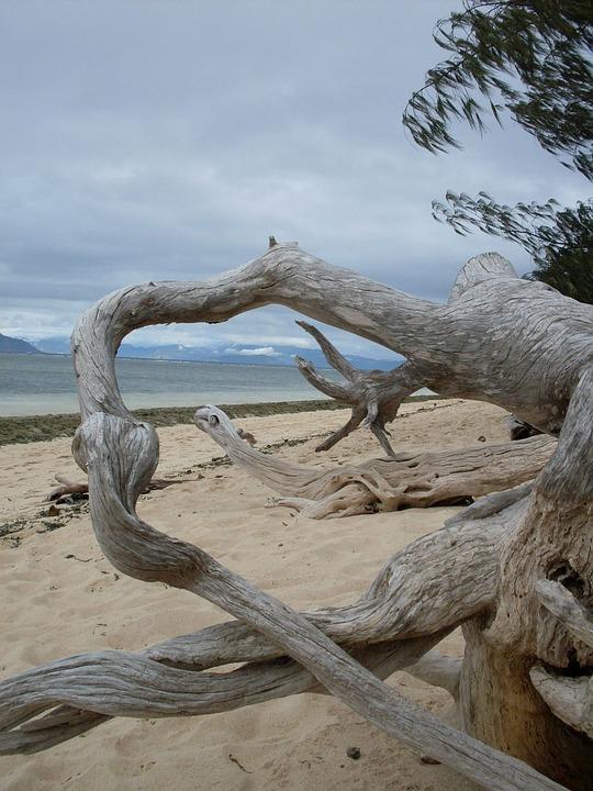 Tropical Island, Australia, Paradise, Beach