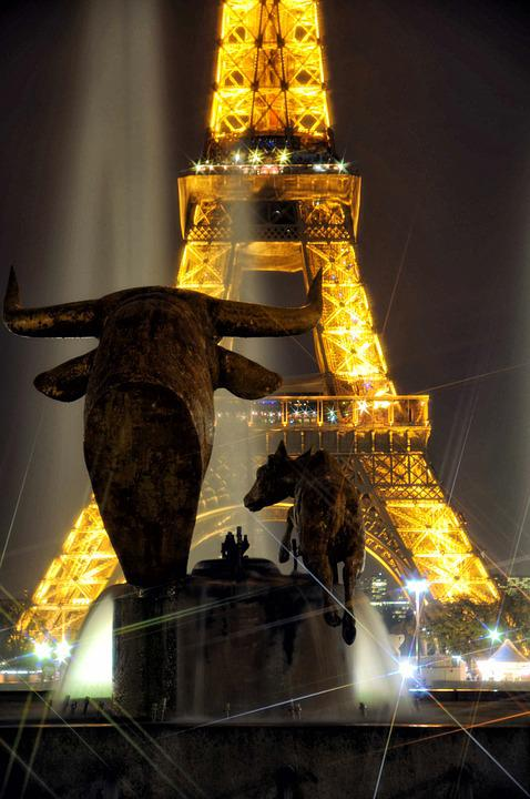 Eiffel Tower, Night, Flicker, Monument, Bull, Paris