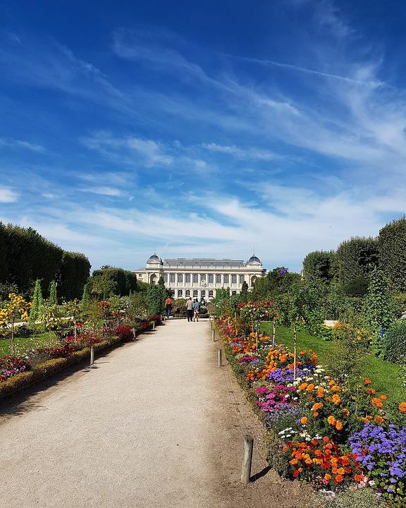 Paris, Museum Of Natural History, Flowers, Garden