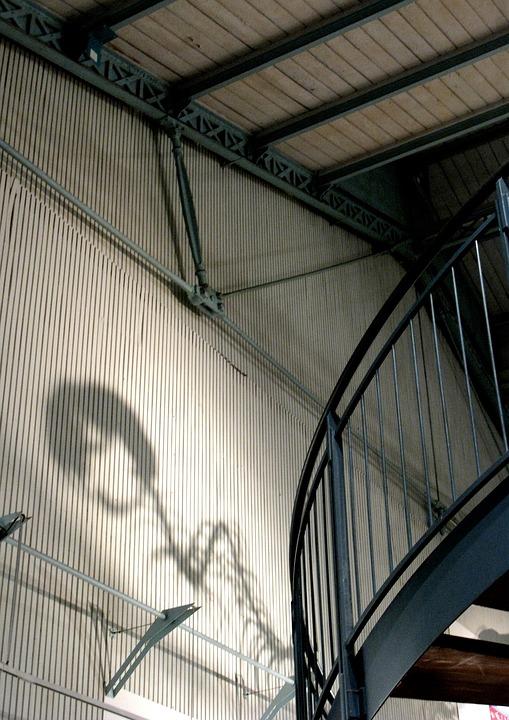Dinosaur, Shadow, Museum, Interior, Paris
