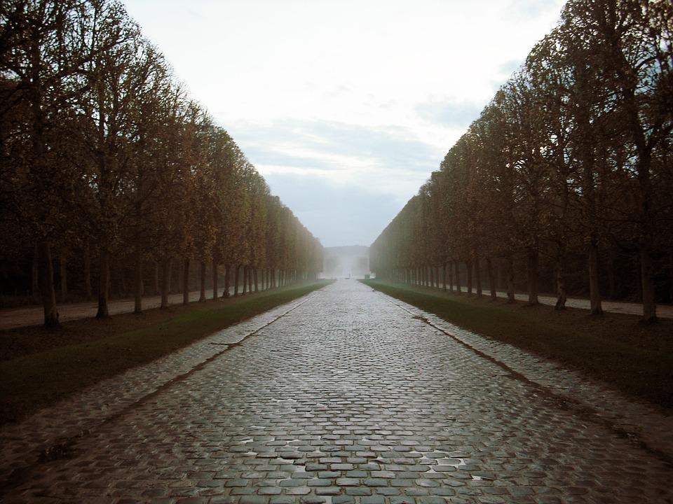 Versaille, Paris, European, Trees, Road