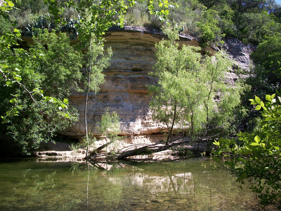 Creek, Austin, Texas, Rock, Wall, Woods, Stream, Park