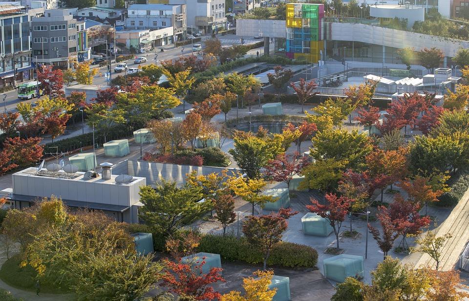 Fall, Autumn, Outdoors, Nature, Park, Landscape
