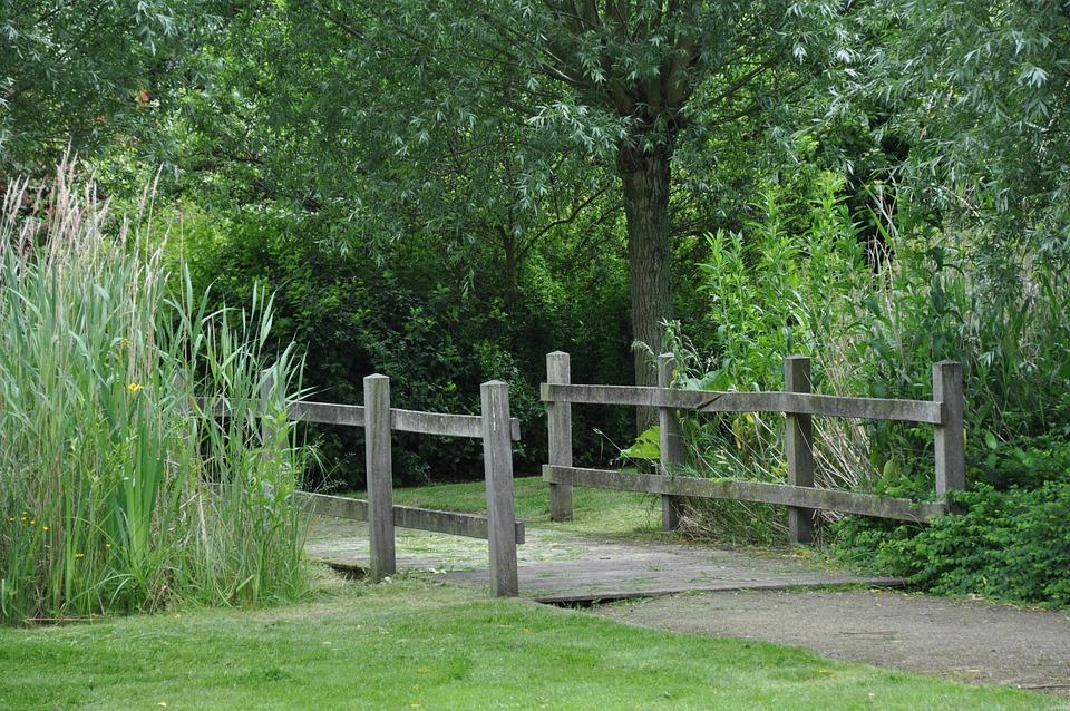 Nature, Bridge, Rest, Farewell, Park, Trees, Green