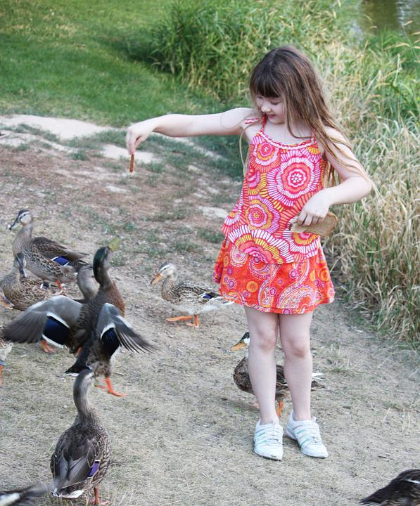 Child, Girl, Park, Play, Kid, Happy, Duck, Outdoors