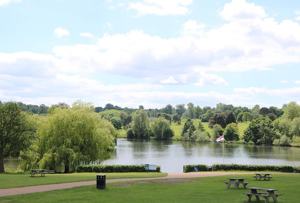 Garden, Park, Outdoor, Summer, Nature, Landscape, Tree