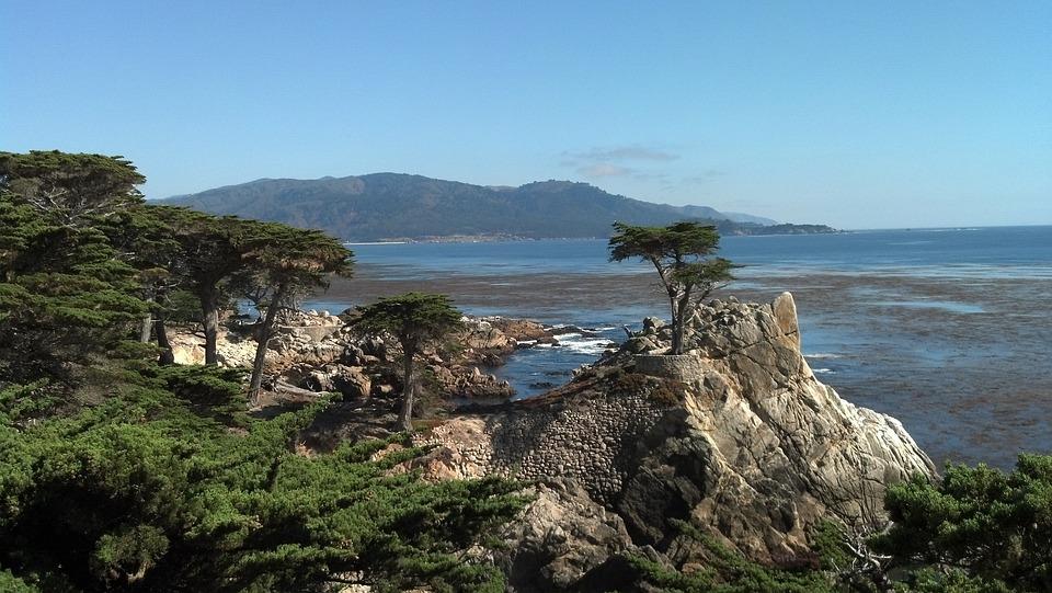 Trees, California, Park, Coast, Landscape, Mountains