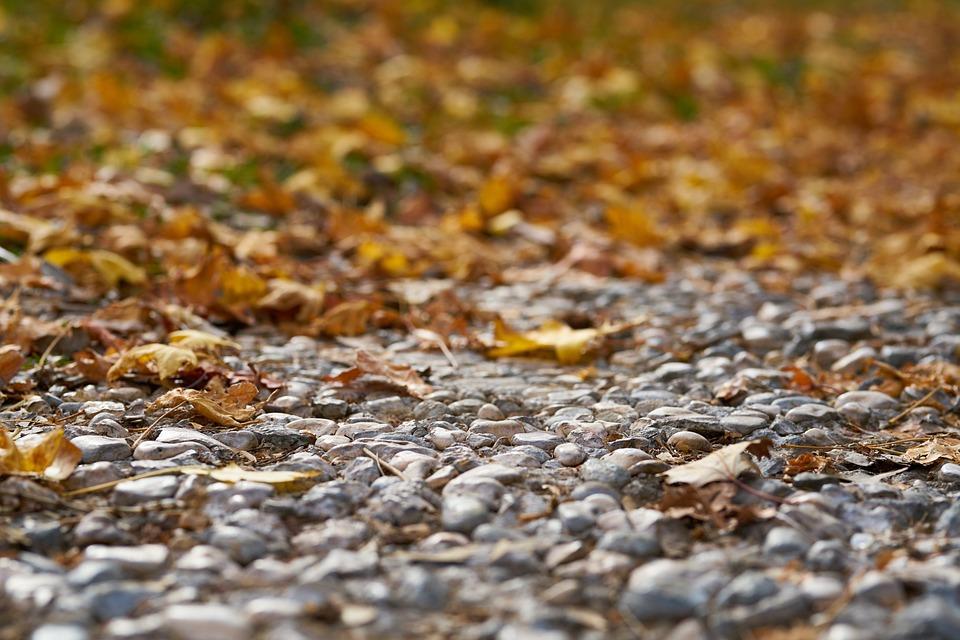 Autumn, The Leaves Are, Street, Park, Season, Romantic