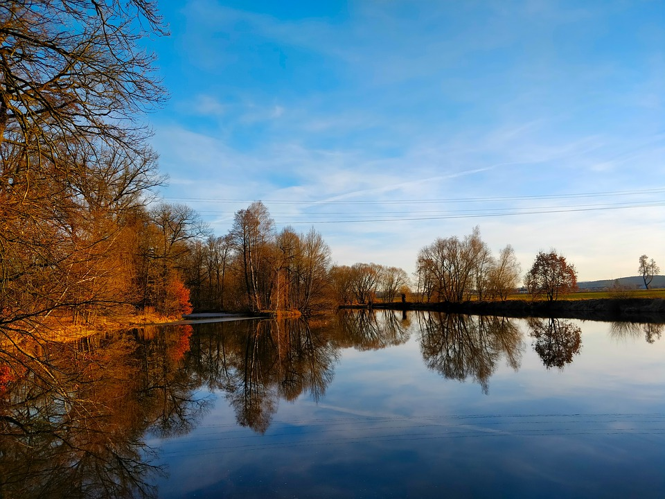 Pond, Forest, Water, Lake, Trees, Nature, Park, Spring