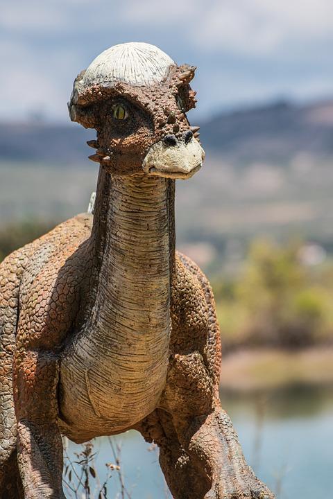 Gondava, Park, Dinosaurs, Boyaca, Colombia, Tourism