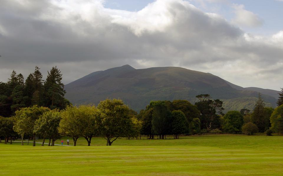 Ireland, Park, Mountain, Grass, Trees, Nature