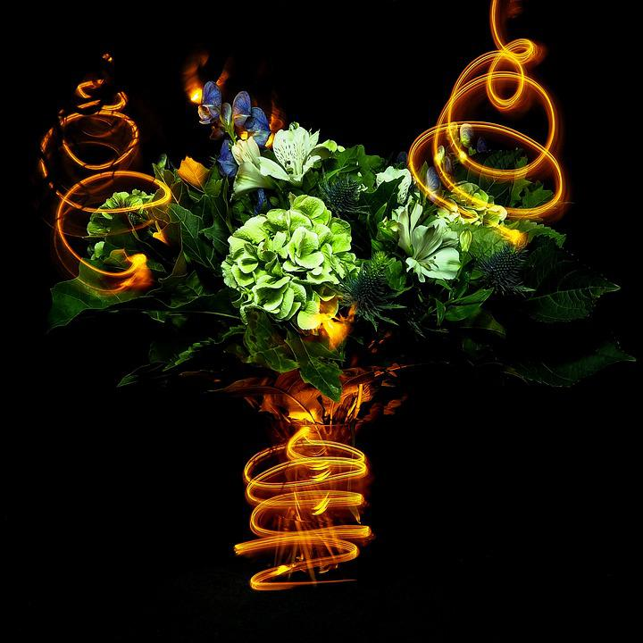 Lightpainting, Flowers, Party, Bouquet