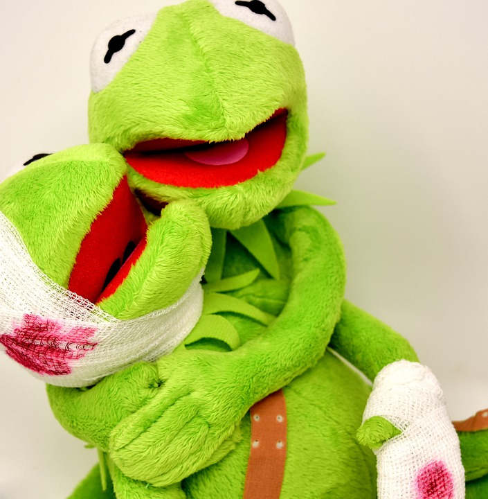 Frogs, Injured, Kermit, Comfort, Patch, Association