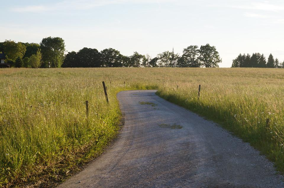 Away, Path, Meadow, Nature, Grass, Gravel Road