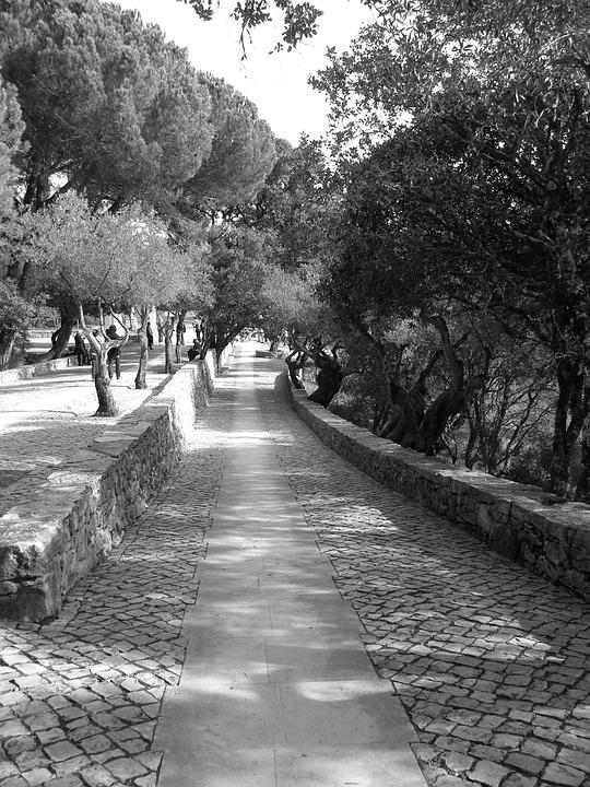 Portugal, Black And White, Garden, Path, Stonework