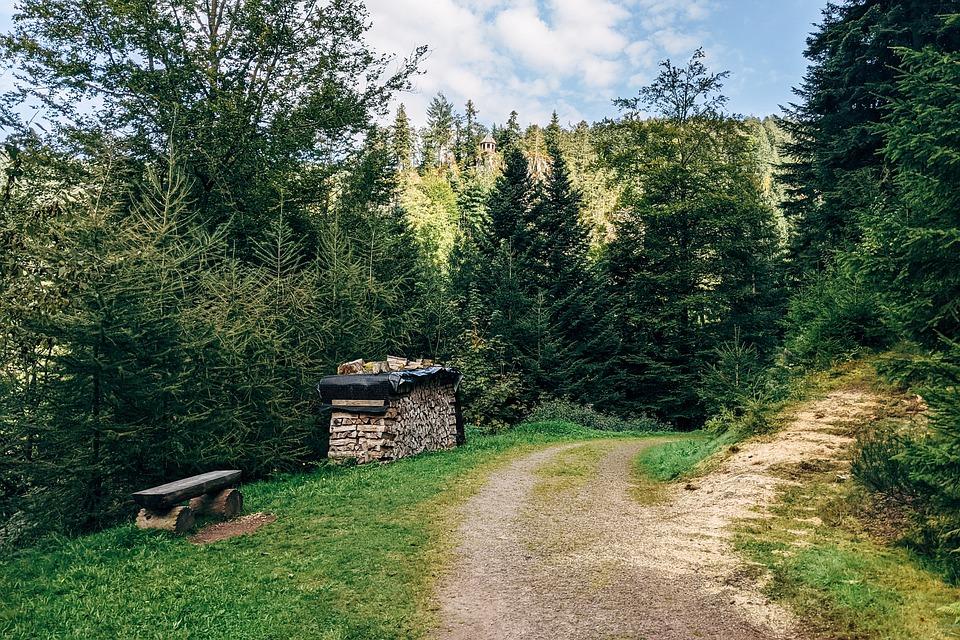 Path, Black Forest, Germany, Burgbach