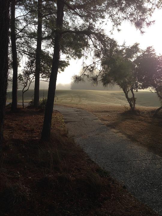 Path, Golf, Green, Course, Landscape, Leisure, Grass
