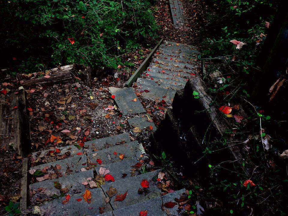 Stairs, Path, Hiking, Nature, Autumn, Fall, Climbing