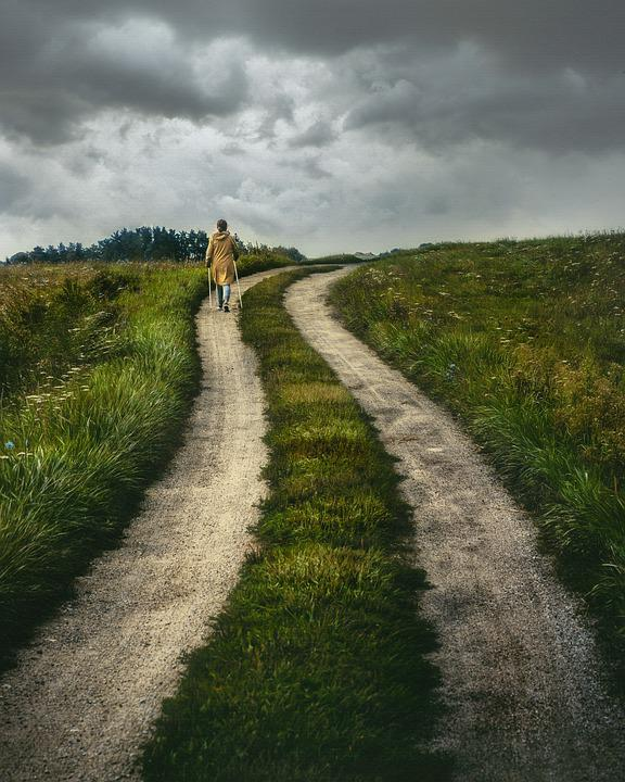 Path, Rural, Nature, Road, Countryside, Outdoors