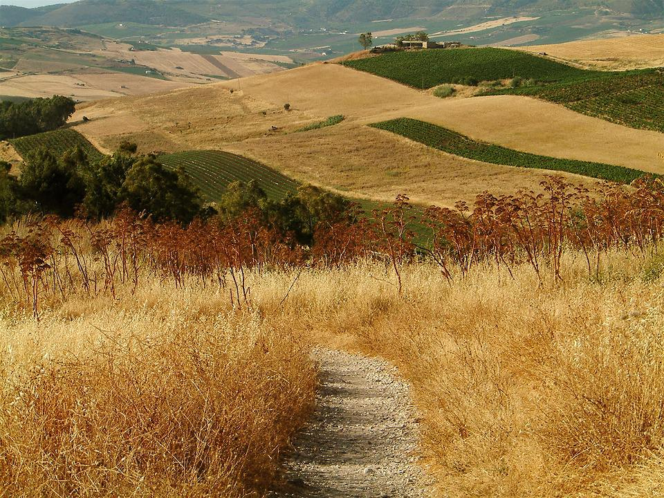 Sicily, Hills, Countryside, Path, Fields, Italy, Land