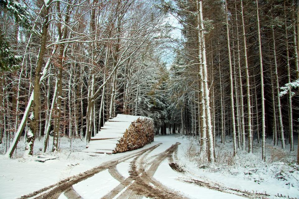 Germany, Bavaria, Snow, Winter, Tracks, Trail, Path