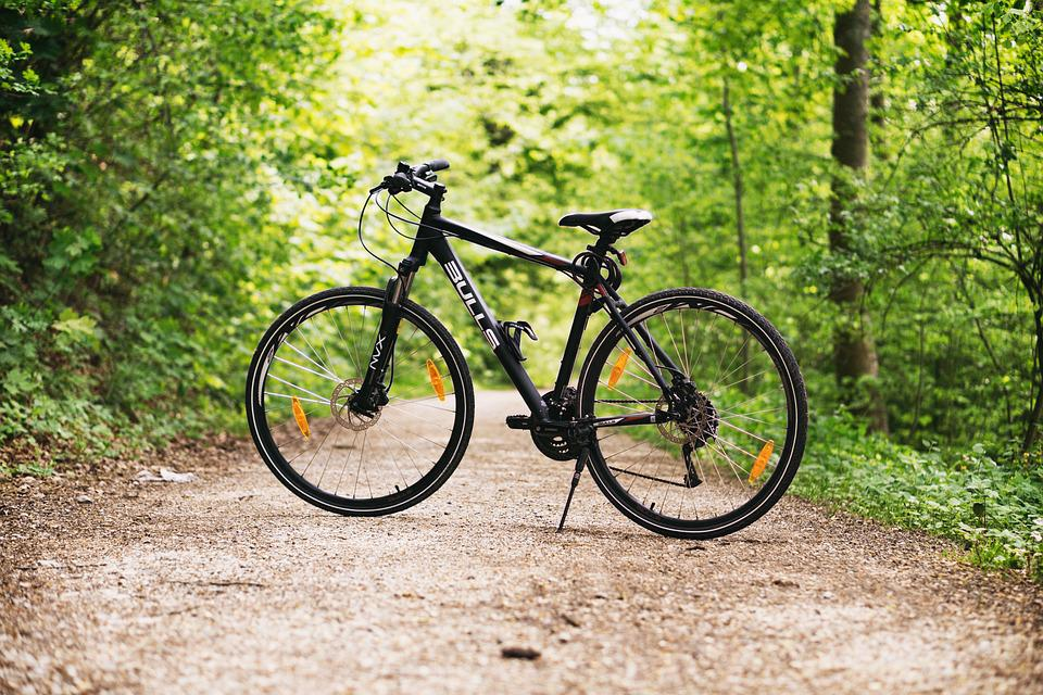 Bicycle, Bike, Forest, Mountain Bike, Path, Trees